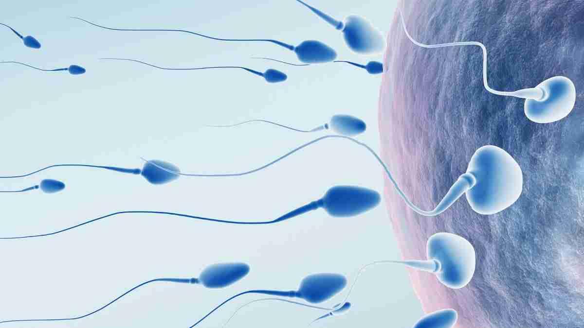 Clínica de fertilidad en Saltillo